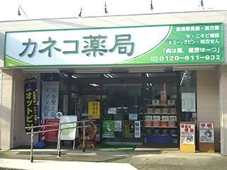 神奈川_カネコ薬局