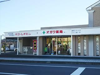 静岡_オガワ薬局