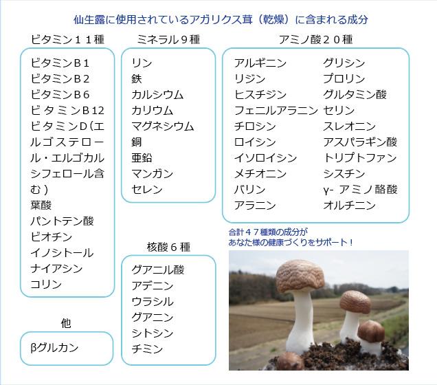仙生露のアガリクス茸には栄養がぎっしり